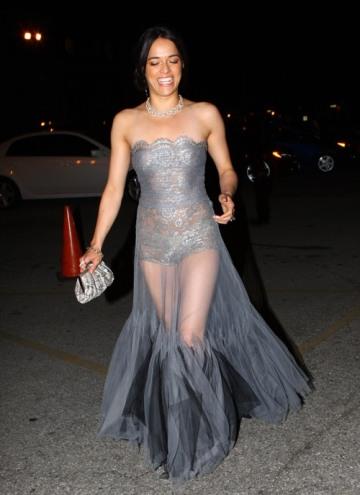 michelle-see-through-dress